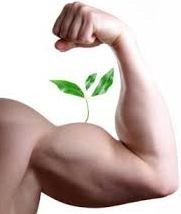 plant on muscle arm